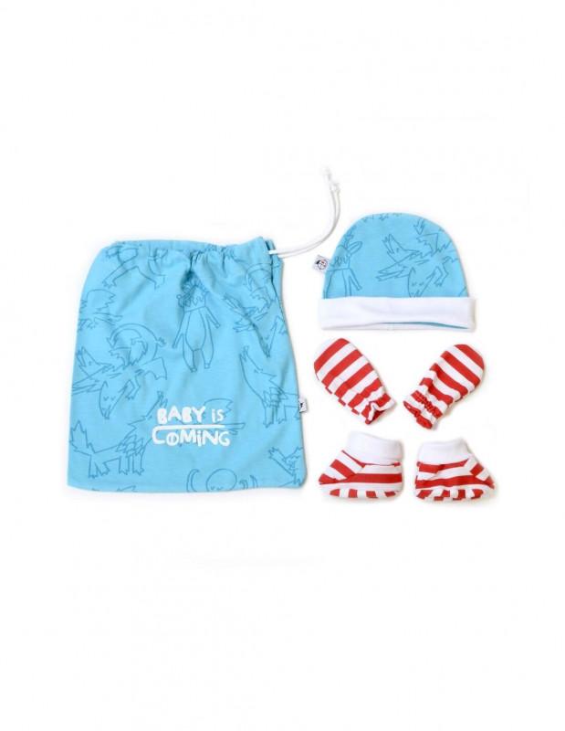 Pack recién nacido/a Baby is Coming -...